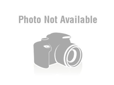 Piston - 26cc/34mm